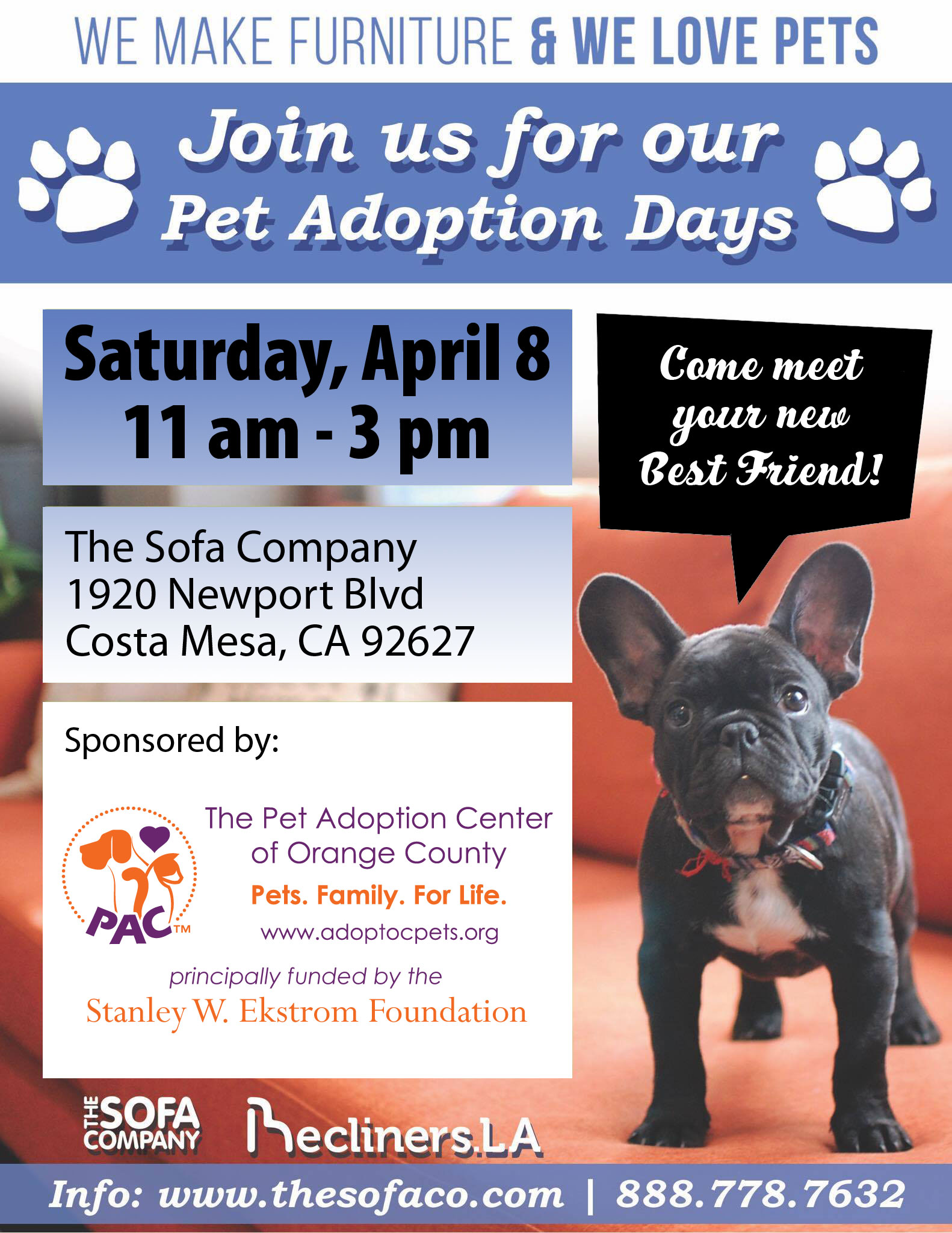 We Are Pleased To Be Chosen As The Sponsor Group For Sofa Company S Pet Adoption Days On Saay April 8 From 11 Am 3 Pm