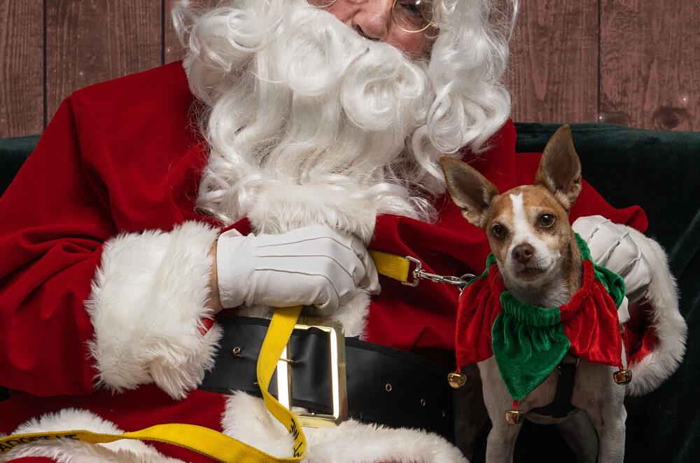 Santa and George